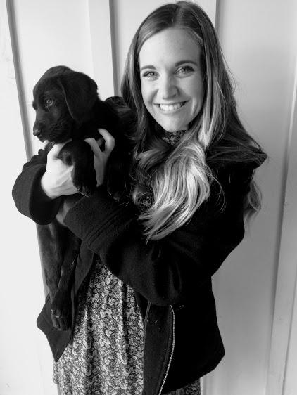 Puppy Barn IUI 2