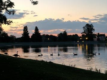 Denver Park Sunset