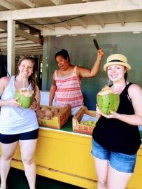 Oahu Fruit Stand 3